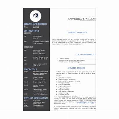 Template Capability Statement Simple Gray Statements Needs