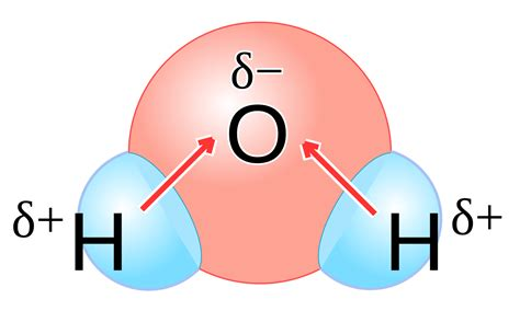 file h2o polarity svg wikimedia commons