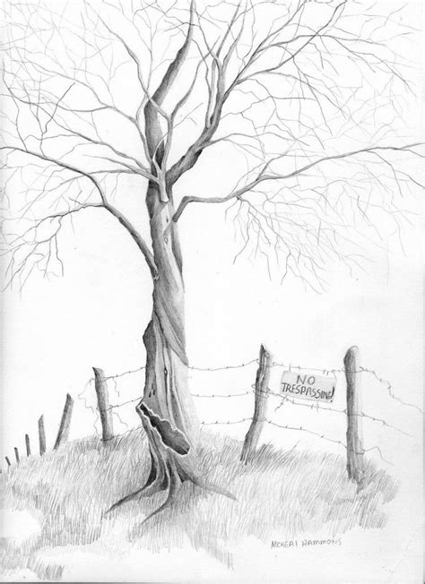 How Draw Trees Pencil Question Many The