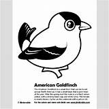 Goldfinch Coloring American Pages Birdorable Downloads Fun 400px 69kb Drawings Activity sketch template