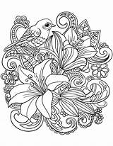 Coloring Pages Adults Floral Bird Bouquet sketch template