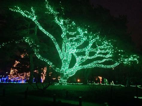 25 best ideas about toledo zoo lights on