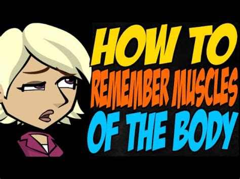 How To Remember Muscles Of The Body Youtube