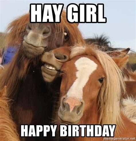 Hay Meme - horse meme hay www pixshark com images galleries with a bite
