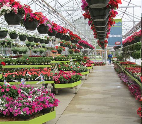 garden stores me local garden stores deentight with centers me plans