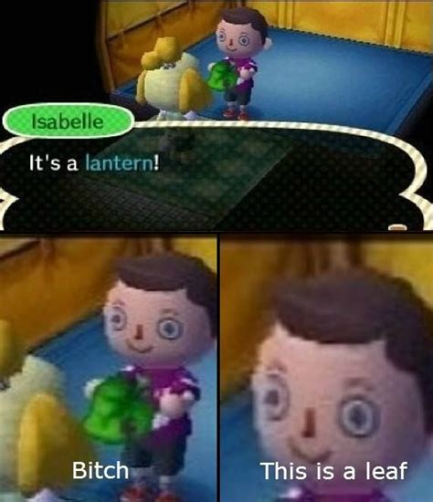 Animal Crossing Memes - animal crossing new leaf bitch this is a leaf new leaf love pinterest leaves animal and