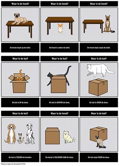 Prepositions Luogo Place Preposizioni Base Examples Storyboard