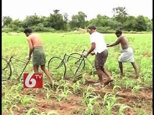 Agricultural Innovation :: VideoLike