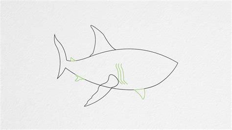 draw  shark step  step youtube