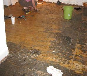 How do i remove adhesive from hardwood floors pete39s qa for How to clean glue off hardwood floors
