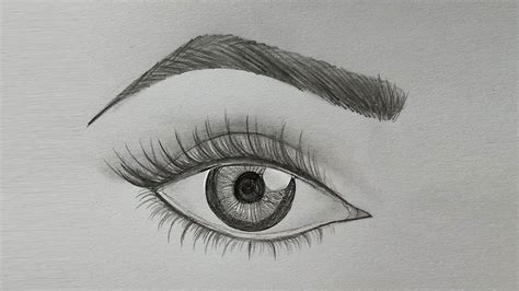 draw eye eyebrow step  step  easy youtube