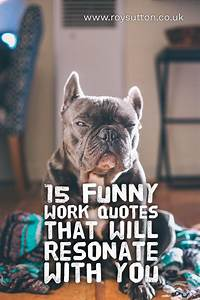 15 funny work q... Funny Work Experience Quotes
