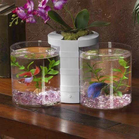 types  fish tanks