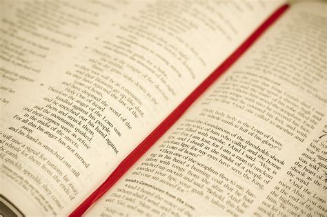 Your Personalized Bible