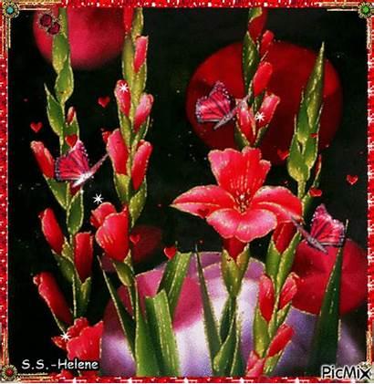 Flowers Picmix
