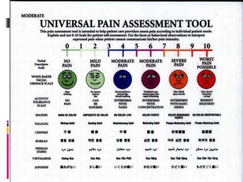 assessment  pain