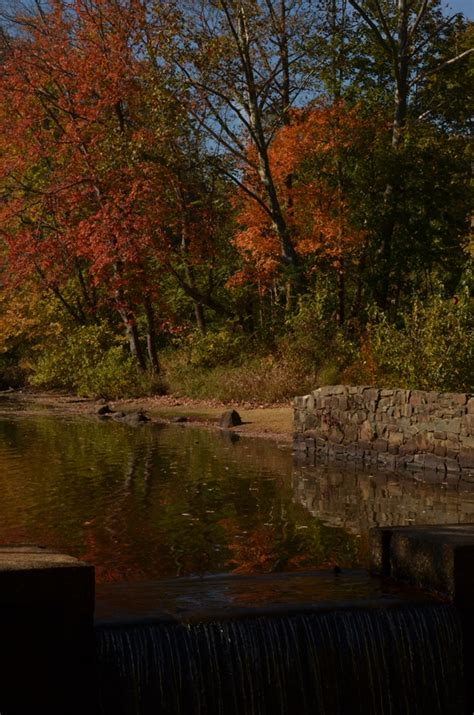 davidson mill pond park  jersey trails association