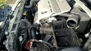 95 Lexus Es300 V6 Engine Diagram 95 Nissan Altima Engine Diagram Wiring Diagram