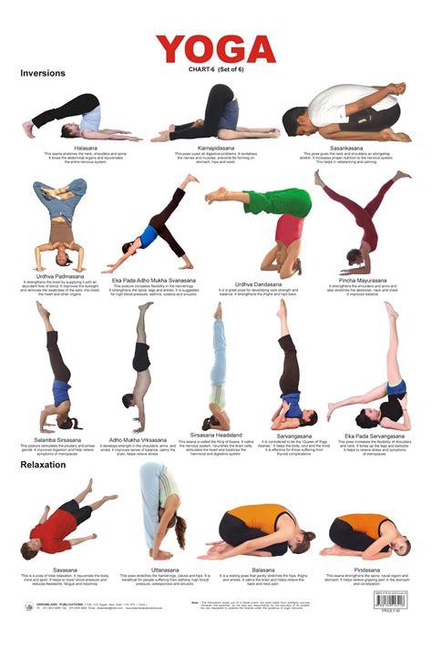 yoga poses  beginner coordstudenti