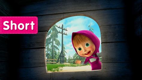 masha and the bear laundry day masha and the bear how they met where are you all youtube