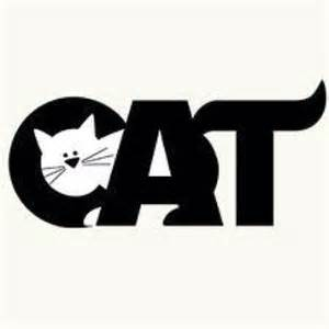 Kitty Cats Words