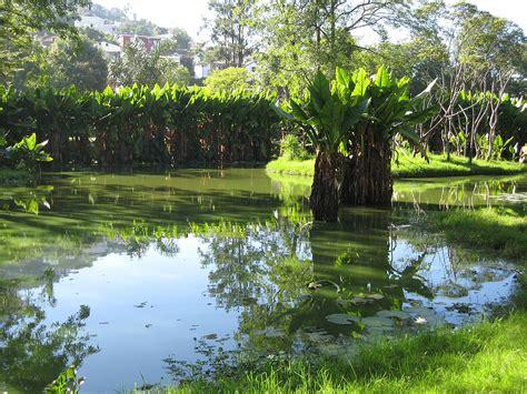 Zoological Garden Botanical And Zoological Garden Of Tsimbazaza Wikipedia