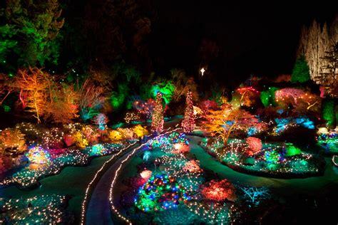 evening photo christmas lights at butchart gardens