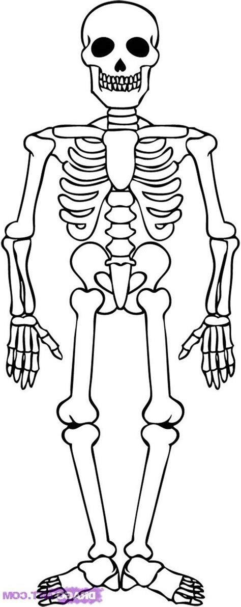 awesome skeleton drawing coloring page kids play color