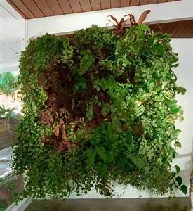 Vertikaler Garten Kaufen : pflanztasche wally three von wallygro im greenbop online shop kaufen ~ Watch28wear.com Haus und Dekorationen