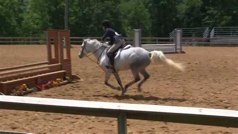 pony hunter