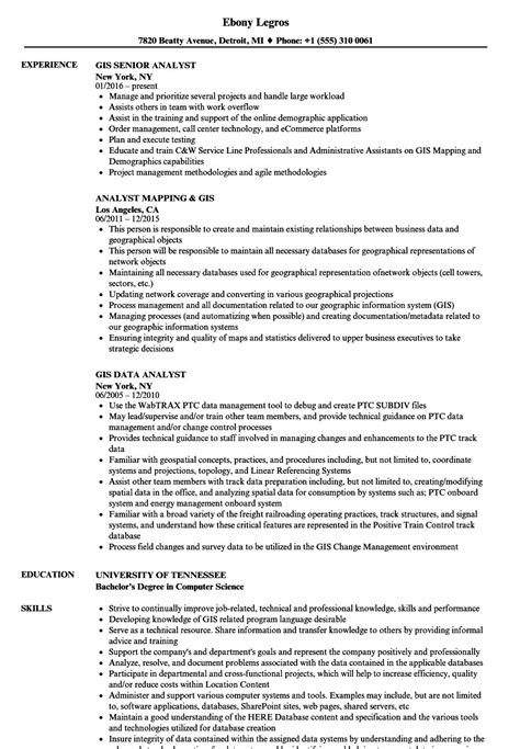 Gis Resume Format by Gis Skills Resume Unique Format Luxury Template Executive