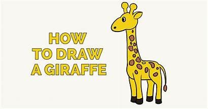 Giraffe Draw Drawing Easy Clipart Drawings Tutorial