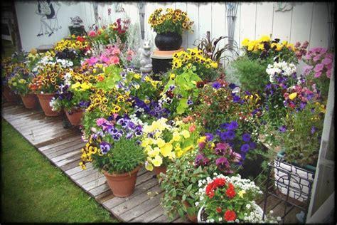 Interior Gorgeous Patio Vegetable Garden Containers