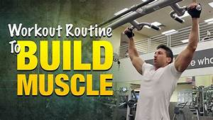 Workout Routine To Build Muscle  Build Bigger Arms  Legs  And Back Muscles With This Workout
