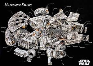 Star Wars   Print  The Millennium Falcon Cutaway    Schematics
