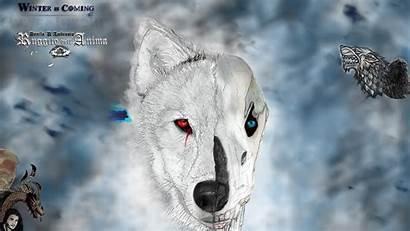 Winter Coming Thrones Dell Anima Ambrosio Ruggito
