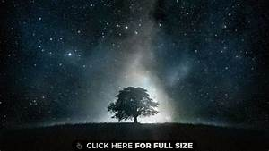 Black Tree Galaxy HD wallpaper