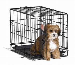 crate small dog cage pet travel cat animal kennel puppy With dog crate or kennel