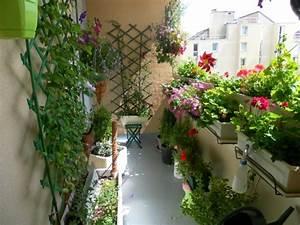 Plantes Grimpantes Pot Pour Terrasse : d coration balcon en attendant le printemps ~ Premium-room.com Idées de Décoration