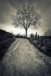 Best of Black and White Photography - Nature   Black and ...