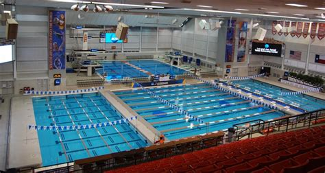 ncaa swimming diving national championship