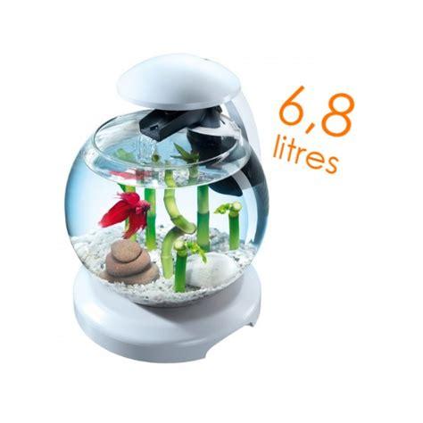 d 233 coration aquarium rond