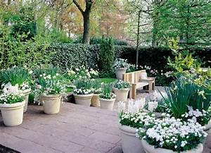 Dekorative Bäume Für Kleine Gärten : ideen f r den kleinen garten planungswelten ~ Markanthonyermac.com Haus und Dekorationen