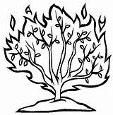 Bush Burning Drawing Coloring Moses Clipart Pages Line Bushes Bible Craft Netart Outline Template Getdrawings Story Printable Crafts Sketch Mose sketch template