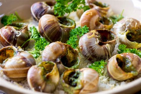 escargot cuisiné image gallery escargots
