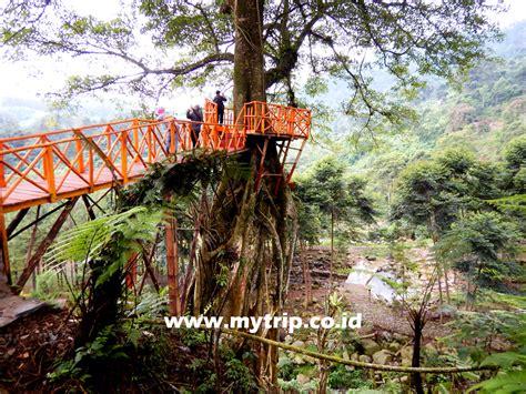curug ciherang rumah pohon jonggol