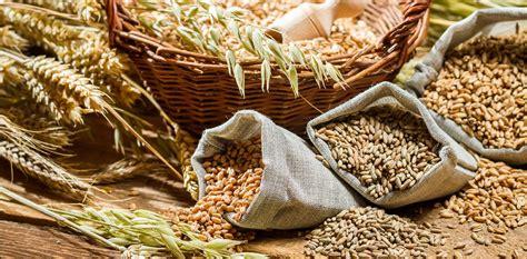 whole grains grain council