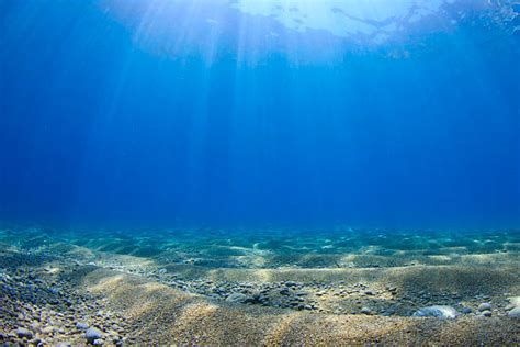 Free Ocean Floor Images, Pictures, And Royaltyfree Stock