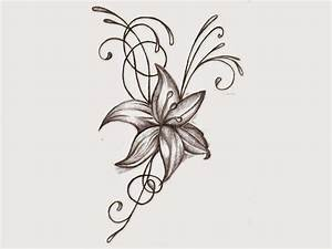 Flower Drawing - Structure Flower