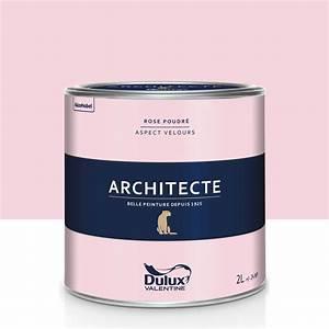 Cuisine Rose Poudré : peinture rose poudr velours dulux valentine architecte 2 l leroy merlin ~ Melissatoandfro.com Idées de Décoration